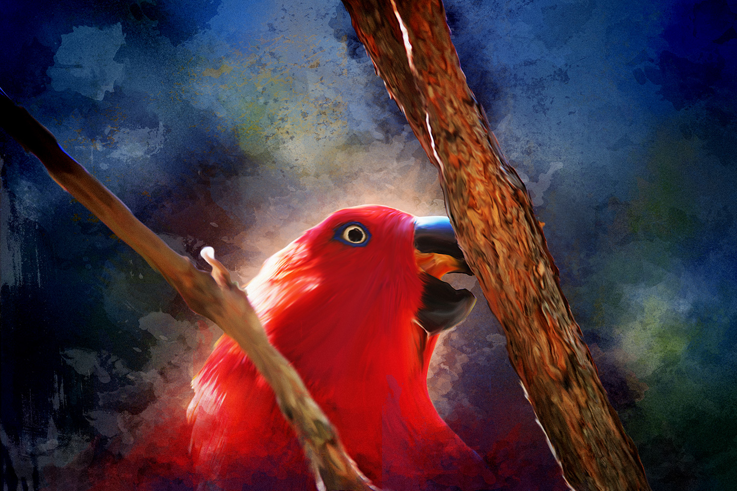 Sourcing reliable Eclectus Parrot information